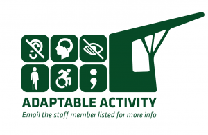 Our adaptive activity logo.