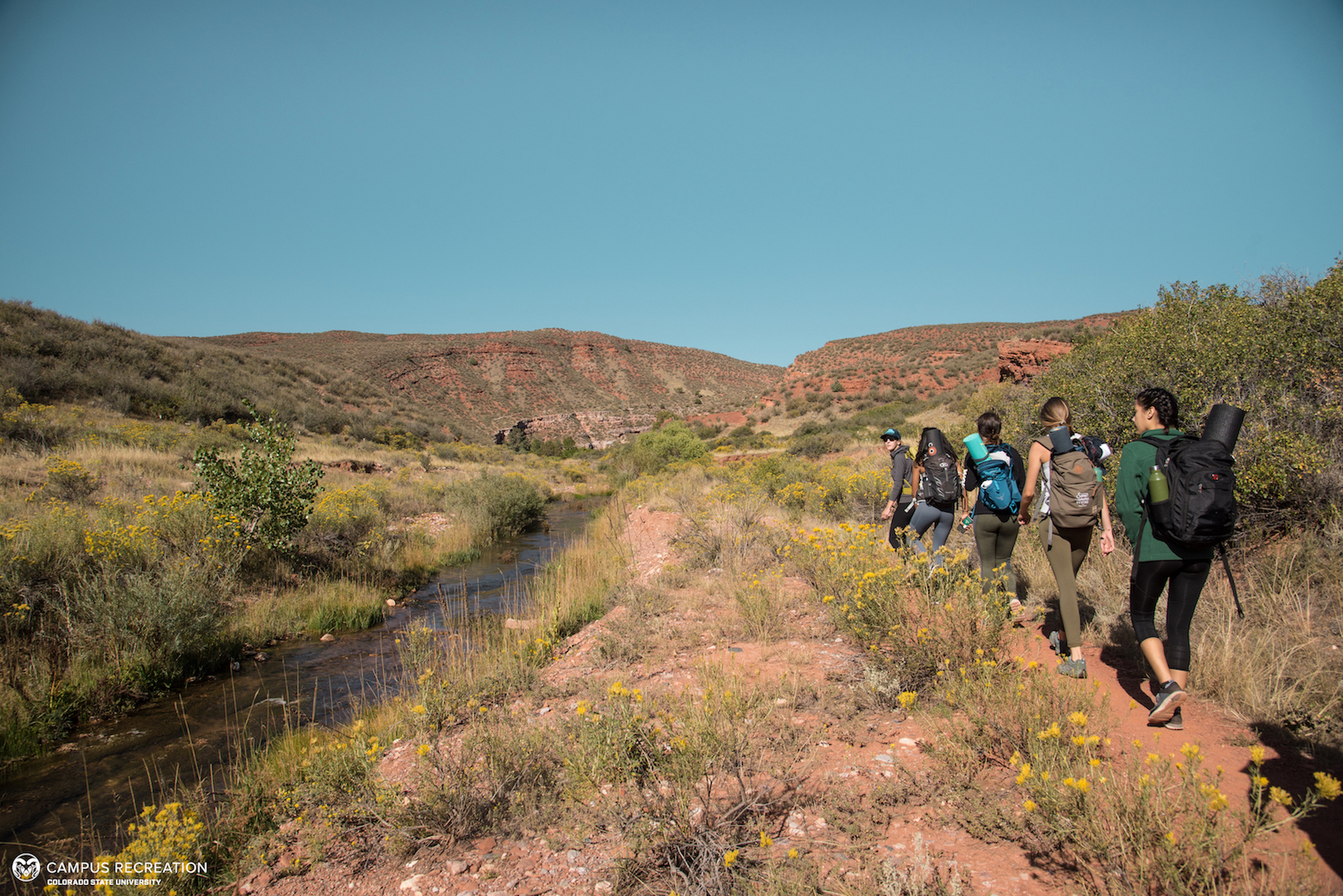 Five Outdoor Program participants hike through a trail lined with a stream and yellow flowers.