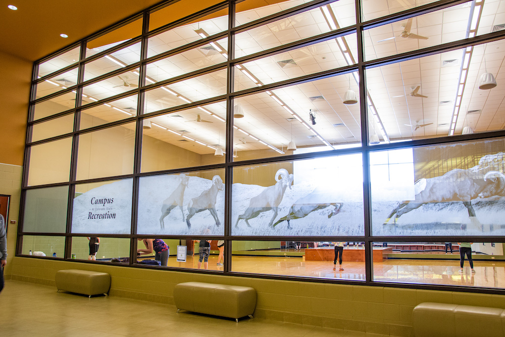 A photo of Studio One inside the student recreation center.
