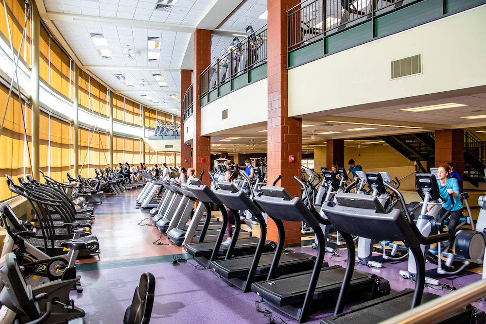 Photo of treadmills and ellipticals among many other workout machines in the downstairs workout areas.