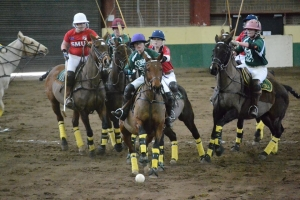 Photo of participants and horses playing polo sports club.