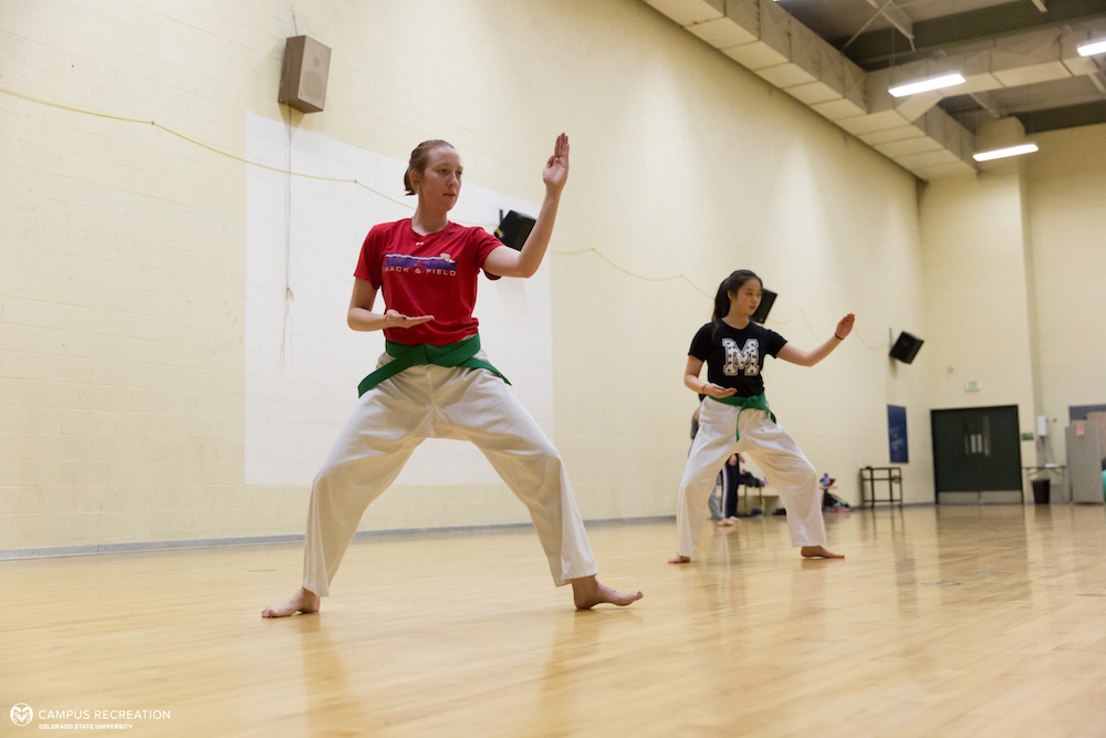A photo of two students participating in the Tae Kwon Do martial arts course